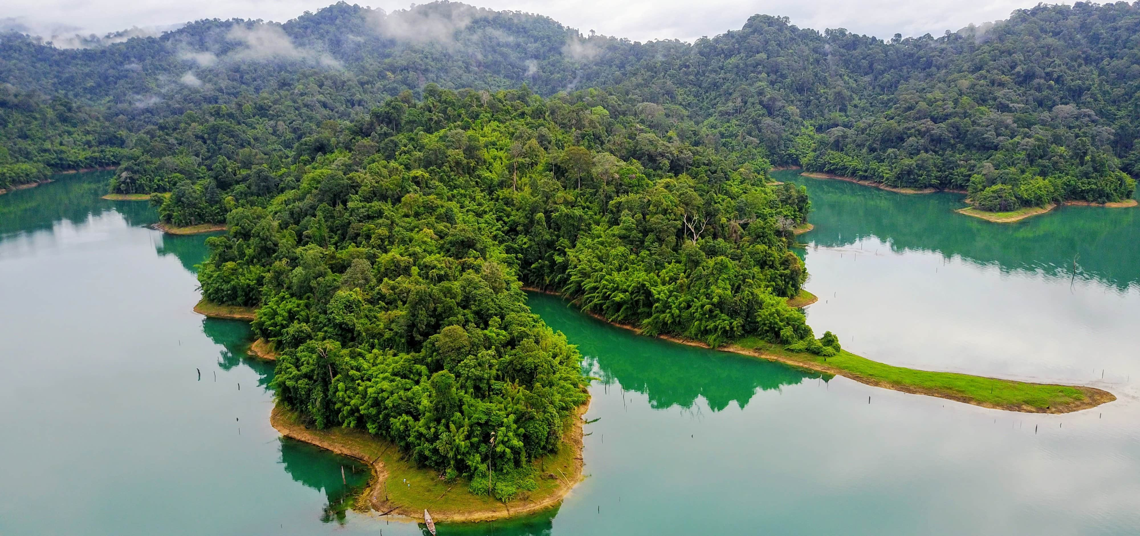 Khao Sok - lush forest surrounded by the lake